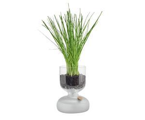 """Samozavlažovací květináč """"Gaia I"""", Ø 9, výš. 15 cm"""