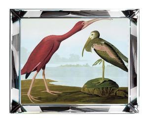 "Nástěnná dekorace ""Tropical Birds I"", 58 x 48 cm"