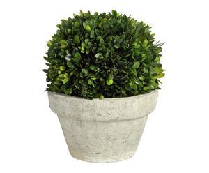 "Rostlinná dekorace ""Buxus II"", Ø 20, výš. 25 cm"