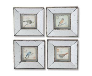 Bilder-Set Motacilla alba, 4-tlg.