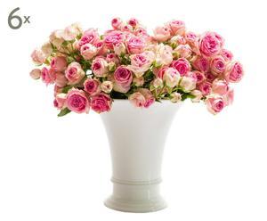 Gutschein Frische Blumen, 6 Lieferungen