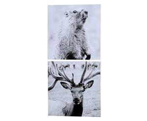 Wandbilder-Set Tierwelt, 2-tlg. 40 x 40 cm