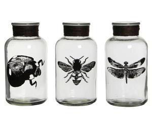 Deko-Gläser-Set Bug, 3-tlg., H 20 cm