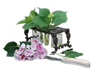 Ableger-Kit Eden für 8 Pflanzen, B 22 cm
