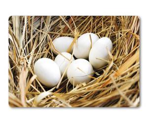 Wand-Spritzschutz Nest, 59 x 41 cm