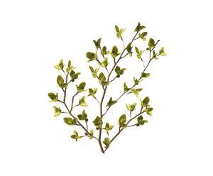 Wandsticker NATURAL GREEN