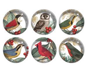 Set de 6 imanes Bird