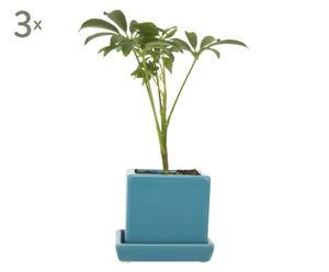 Set de 3 macetas Cube con platillo – azul cielo