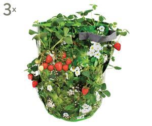 Set de 3 bolsas para cultivo de fresas
