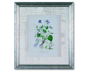 Impresión con marco de madera y cristal Flora Diana - 30 x 35 cm