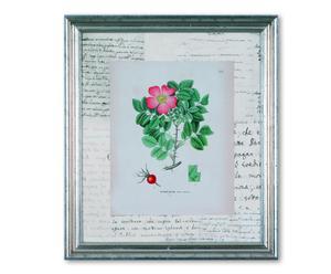 Impresión con marco de madera y cristal Flora Maestra - 30 x 35 cm