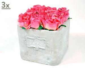 Set de 3 macetas de cerámica con rosas rosas