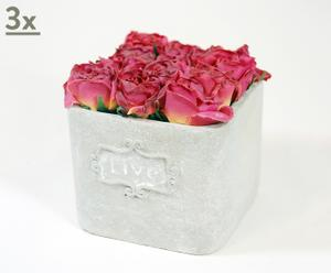 Set de 3 macetas de cerámica con rosas burdeos
