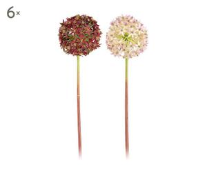 Set de 12 flores allium