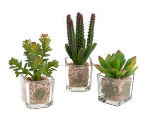 Set de 3 cactus artificiales con maceta – transparente y verde
