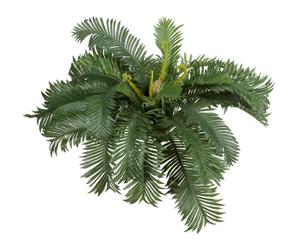 Planta artificial Cyca