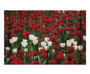 Cabecero Tulipanes rojos I – 50x35