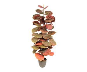 Planta de Uva de playa de poliéster con maceta - verde