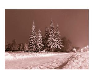 Impresión Ecoflot Paisaje Nevado - 50x70 Cm