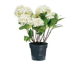 Hortensia artificial con maceta – marfil