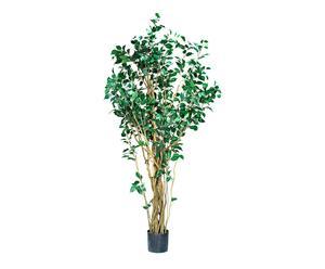 Ficus artificial IV