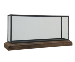 Acuario natural en madera de abedul, hierro y cristal - grande