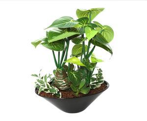 Planta Signonium artificia con maceta en cerámica – grande