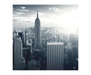Cuadro impreso Nueva York en vista de pájaro II