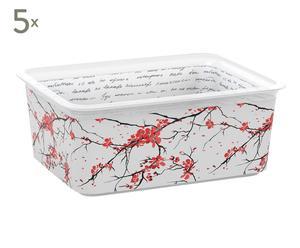 Set de 5 cajas de almacenamiento Premium Zen - M