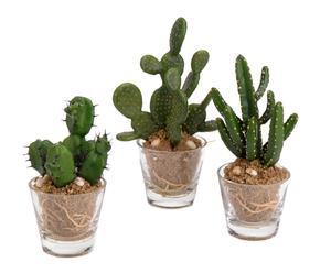 Set de 3 cactus con maceta de plástico, vidrio y hierro