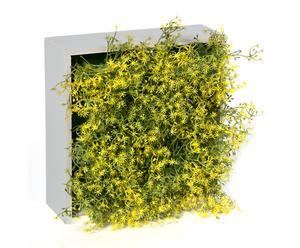 Concobox gipso – amarillo