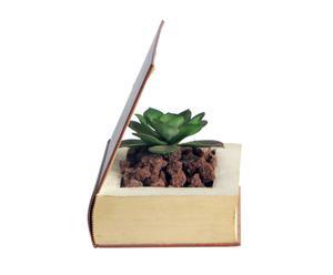 Libro-maceta con cactus artificial