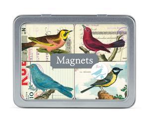 Set de imanes Pájaros - 24 piezas