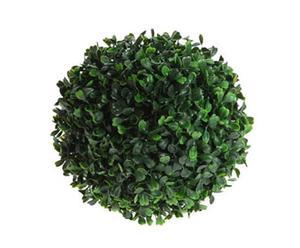 Planta decorativa - Bola