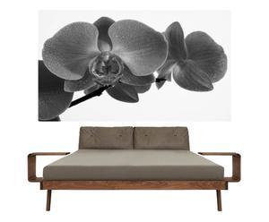 Foto adhesivo Orchid BN
