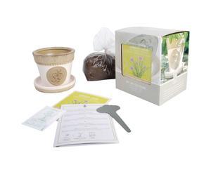 Set de jardinería para cultivar cebollino