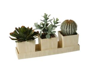 Set de 3 macetas con plantas decorativas
