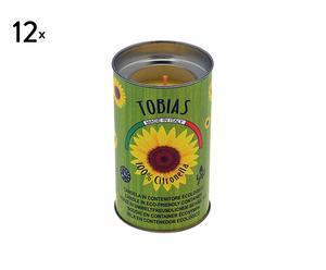 Set de 12 velas ecológicas – citronela