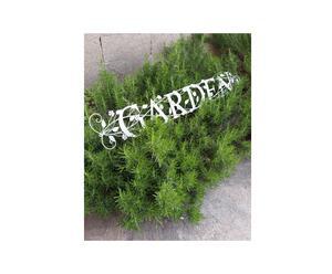 Letras decorativas Jardín