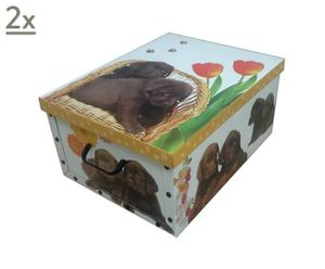 Set de 2 cajas de cartón Sweet Dogs