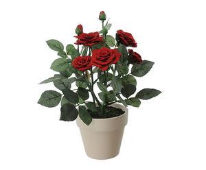 Planta decorativa con rosas rojas Marilia - Ø16