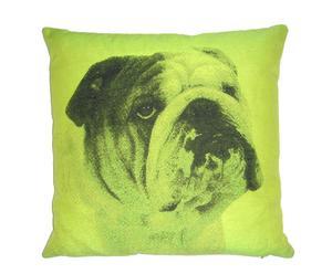 Cojín Bulldog I, verde – 50x50