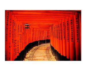 Fotografía sobre lienzo Japón Torii