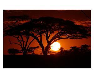 Fotografía sobre lienzo Puesta de sol