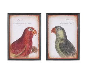 Set de 2 cuadros - Pájaros
