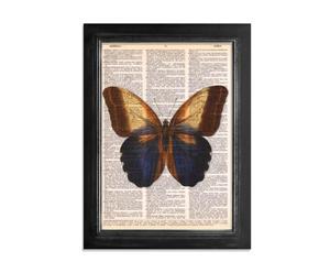 Lámina Gran Mariposa
