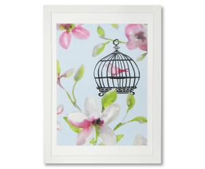 Photo encadrée Birdcage I - 50*70