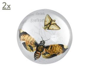 2 presse-papiers Insecte, verre – Ø8