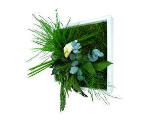 composizione vegetale da tavolo/parete mono - 22x22 cm