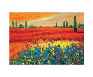 Stampa su pannello mdf Toscana - 100x70 cm